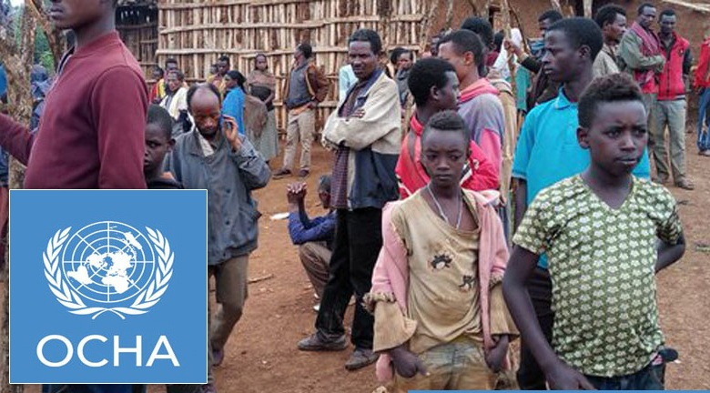 More than 1 million people displaced due to ethnic conflicts in Ethiopia: UN report