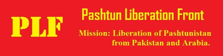 भारतीय सैनिकांवरील हल्ल्याची आग रावळपिंडीपर्यंत पोहोचेल – पश्तून नेत्याचा पाकिस्तान सरकारला इशारा