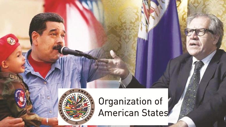 व्हेनेझुएला में लष्करी हस्तक्षेप का विकल्प उपलब्ध – 'ऑर्गनायजेशन ऑफ़ अमेरिकन स्टेटस' के प्रमुख की घोषणा