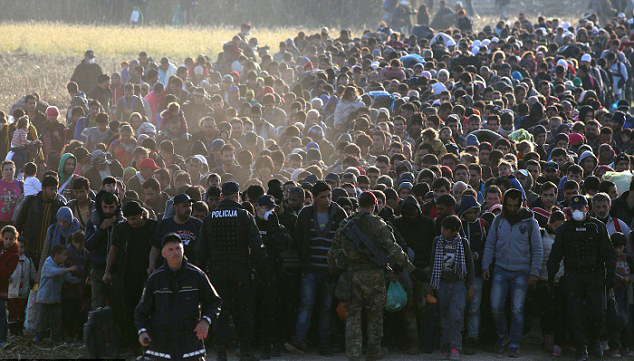 Nearly 5 million illegal immigrants in Europe till 2017: Pew Research Centre report