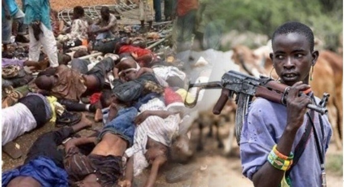 संपूर्ण नायजेरियन क्षेत्र ताब्यात घेतल्यावाचून राहणार नाही – फुलानी दहशतवादी गटाचा इशारा
